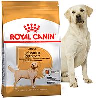 Royal Canin (Роял Канин) Labrador Retriever Adult 30 Корм для лабрадоров старше 15 месяцев