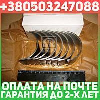 ⭐⭐⭐⭐⭐ Вкладыши шатунные Р1 Д 240 АО10-С2 (производство  ЗПС, г.Тамбов)  А23.01-74-240сбАС