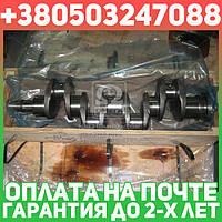 ⭐⭐⭐⭐⭐ Вал коленчатый СМД 18,22 (производство  JOBs,Юбана)  20-04с9
