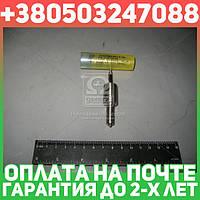 ⭐⭐⭐⭐⭐ Распылитель МТЗ 80,82 (в контейнере) (вместо 176.1112110-60) (производство  ЯЗДА)  33.1112110-40