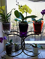 Шанель, подставка для цветов на 5 чаш