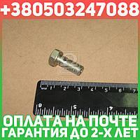 ⭐⭐⭐⭐⭐ Болт штуцера М8х1 L=19 мм (производство  ММЗ)  240-1104787
