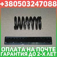 ⭐⭐⭐⭐⭐ Пружина диска сцепления (корзина) МТЗ (пр-во МТЗ)