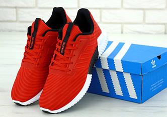 Мужские кроссовки Adidas Climacool  Red/White(Реплика ААА+)