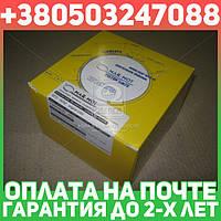 ⭐⭐⭐⭐⭐ Кольца поршневые 5 канистра Мотор Комплект Д 65,Д 240 MAR-MOT (производство  Польша)  Д50-1004060