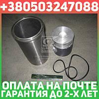 ⭐⭐⭐⭐⭐ Гильзо-комплект Д 260,Д 245 (ГП+уплотнительные кольца) L=230 мм (группа С) Поршень Комплект (производство  МД Конотоп)  260-1000104