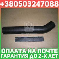 ⭐⭐⭐⭐⭐ Патрубок радиатора МОСКВИЧ (пр-во БРТ)