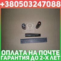 ⭐⭐⭐⭐⭐ Наконечник свечи ГАЗ, УАЗ (код 1.10.1) (литье,  черный /красн.) (1.10.1) / Raider (пр-во Цитрон)