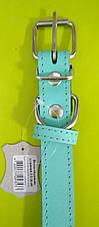 Кожаный ошейник для собак Весна 2.5, фото 2