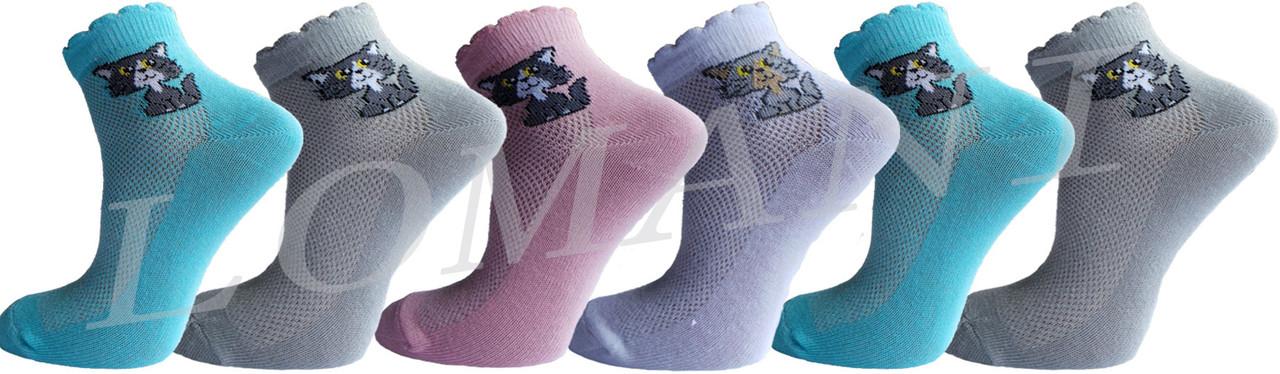 """Дитячі шкарпетки котик """"lomani"""""""
