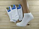 Носки мужские с сеткой белые Стиль Люкс STYLE LUXE   Украина  LYCRA 41-45р НМЛ-06529, фото 2