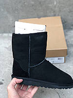Женские угги Ugg Classic Short 5825W Black