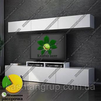 """Комплект мебельного блока для ТВ """"Анита"""""""