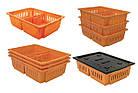 Ящик для перевозки суточных цыплят 690х485х180 мм, фото 2
