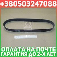 ⭐⭐⭐⭐⭐ Ремень поликлиновый (производство  Contitech)  10PK1145