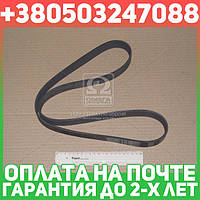 ⭐⭐⭐⭐⭐ Ремень поликлиновый (производство  Contitech)  10PK1350