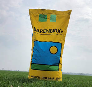 Газонная трава Barenbrug universal deluxe ( Баренбруг универсальный делюкс ) - 20 кг, фото 2