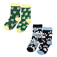 Набор детских носков Sammy Icon Albert+Balto 12-24 месяцев, фото 1