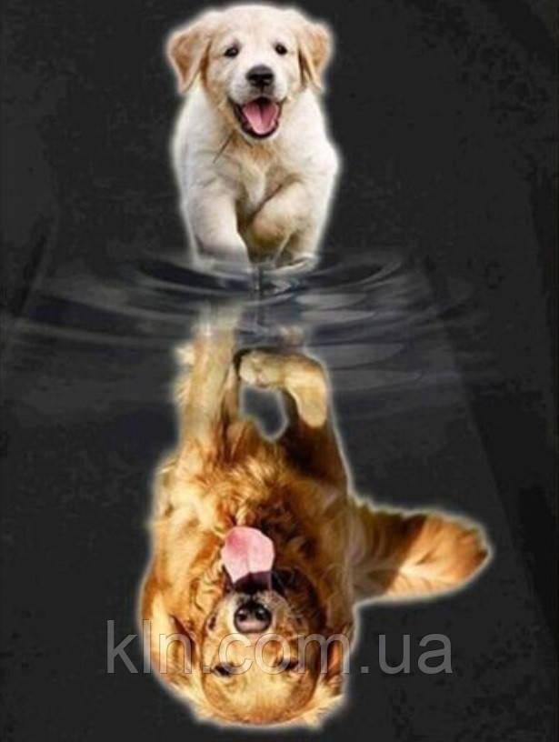 Алмазная живопись Собачья жизнь 40 х 50 см (арт. FS887) квадратные камни