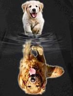 Алмазная живопись Собачья жизнь 40 х 50 см (арт. FS887) квадратные камни, фото 1