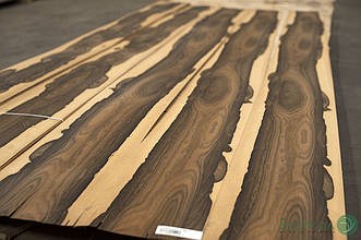 Шпон Зирикоте (строганный) Logs - 0,55 мм 2,10-2,55 м/10 см+
