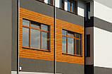 Декоративная доска TABULO, цвет Mahoń (0,83м2), фото 3