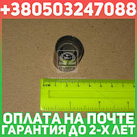 ⭐⭐⭐⭐⭐ Гидрокомпенсатор VAG 1.8/1.8T/2.4/2.8 AJQ/APP/ARY/AUQ/AGU/AQA/ARZ/AUM/AGA/ALF… (IN) (производство  Ruville) АУДИ,СИАТ,ШКОДА,ФОЛЬКСВАГЕН, 265704