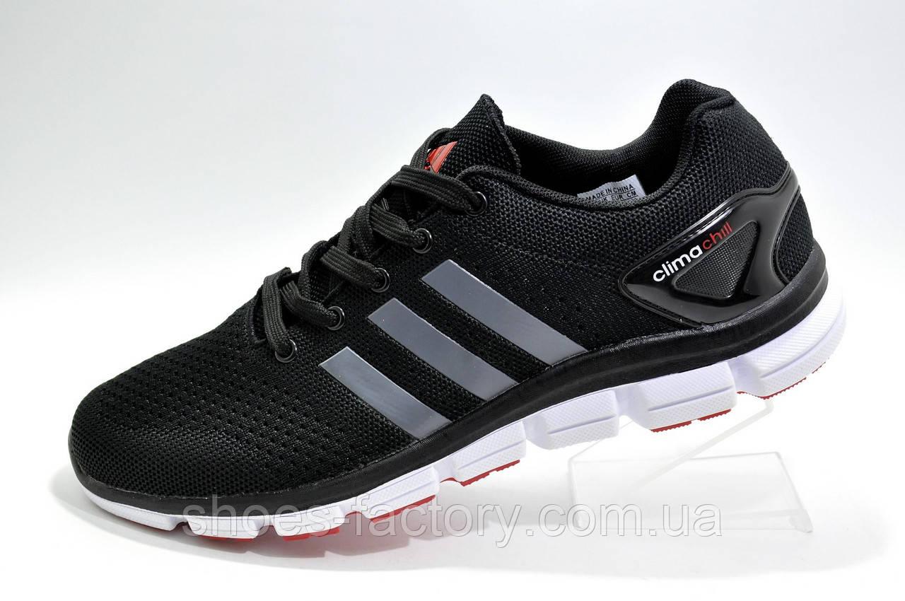 Літні кросівки в стилі Adidas Climachill 2019, Black\White (Climacool)