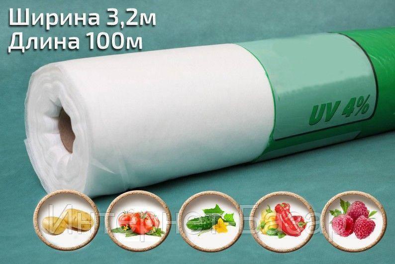 Агроволокно Agreen 19 (3,2*100) рулон
