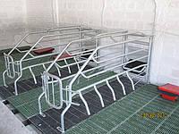 Оборудование - Пластиковые решетчатые полы