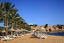 Открытие Dessole Seti Sharm Resort 4*