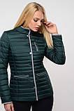 Короткая женская куртка Селена,  размеры 42 - 46. TM NUI VERY, фото 2