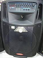 Колонка Temeisheng SL12-01 аккумуляторная, USB, Bluetooth, 2 микрофона