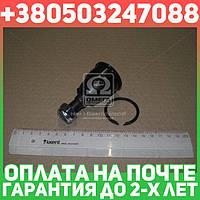 ⭐⭐⭐⭐⭐ Опора шаровая ХОНДА CIVIC (производство  CTR)  CBHO-30