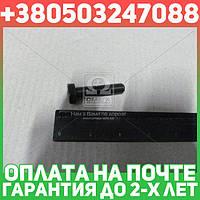 ⭐⭐⭐⭐⭐ Болт крепления опоры VAG (производство  Febi)  03973