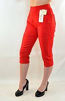 Бриджи женские стрейч в летних расцветках от XL до 5XL (Польша) - хлопок ( Остаток 4 шт.), фото 3