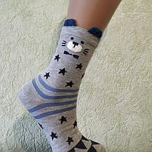 Носки Женские с ушками (мишутка  серенький), размер 36-40