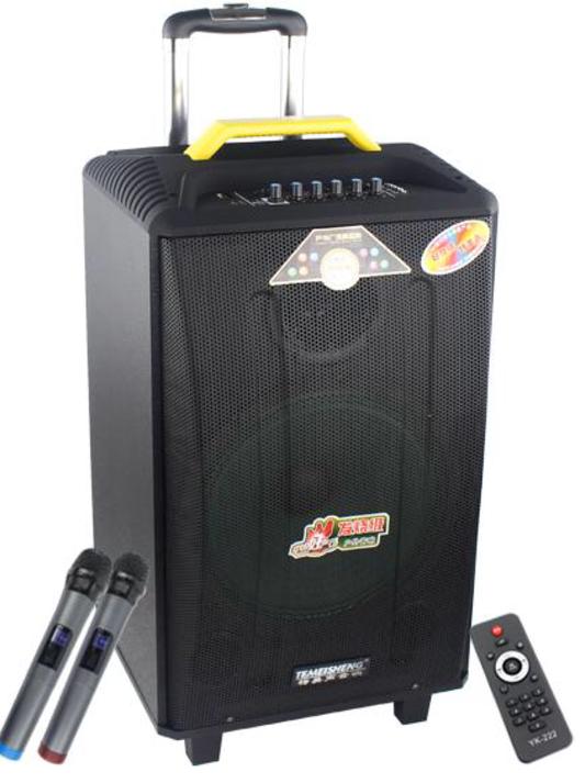 Колонка Temeisheng QX-1214 аккумуляторная,USB, Bluetooth, 2 микрофона