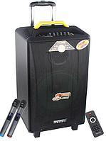 Колонка Temeisheng QX-1214 аккумуляторная, USB, Bluetooth, 2 микрофона