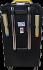 Колонка Temeisheng QX-1214 аккумуляторная,USB, Bluetooth, 2 микрофона, фото 3