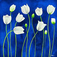 Новый DIY 3D алмаз живопись белый цветок кристалл искусства ремесло шв