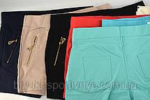 Шорты женские с карманами на молнии и в больших размерах XL - 5XL - хлопок, фото 3
