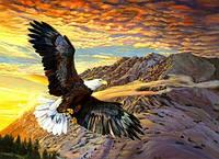 2015 новый DIY 3D алмаз живопись орел в небо парить высокой прочности мозаика вышивка быто