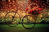 3d алмаз вышивка красивая романтическая велосипед цветочные корзины свет стены декора горн