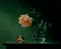 Стеклянные бутылки 3D красивая роза украшения DIY кристалл квадратный алмаз живопись горны