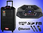 Колонка Temeisheng QX-1215 аккумуляторная,USB, Bluetooth, 2 микрофона, фото 3