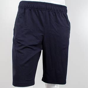 Шорты спортивные мужские, темно-синий, двухнитка стрейч