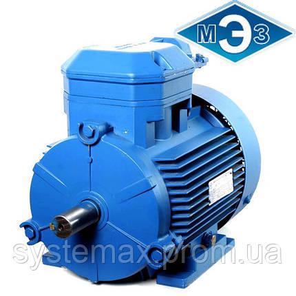 Взрывозащищенный электродвигатель 4ВР80В8 0,55 кВт 750 об/мин (Могилев, Белоруссия), фото 2