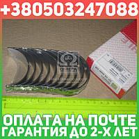 ⭐⭐⭐⭐⭐ Вкладыши коренные РЕНО HL 0,25 G8T/G9T/G9U 2,2/2,5TD (производство  Mahle) ЛAГУНA  1, 021 HS 20297 025