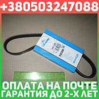 ⭐⭐⭐⭐⭐ Ремень поликлиновый 5PK716EE (производство  DAYCO) МАЗДА,3, 5PK716EE